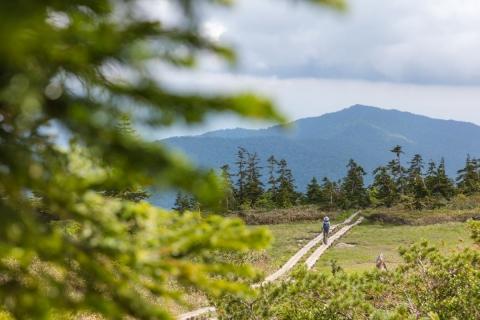 mountain_j_junji_12